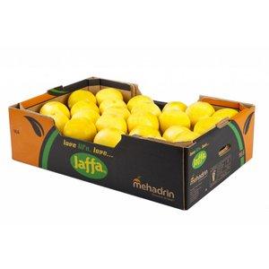 Jaffa Witte grapefruit 40St