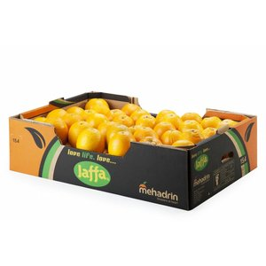 Jaffa Shamouti Orangen 75St