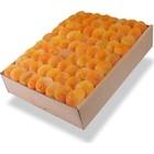 Apricots 5KG
