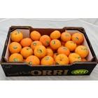 Orri Mandarin