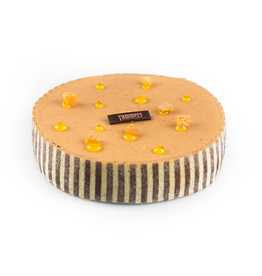 Chocolade abrikoos taartje