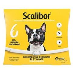 Scalibor collar