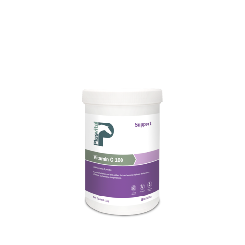 PlusVital Plusvital Vitamin C 100 1kg