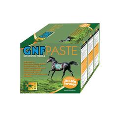 GNF Paste