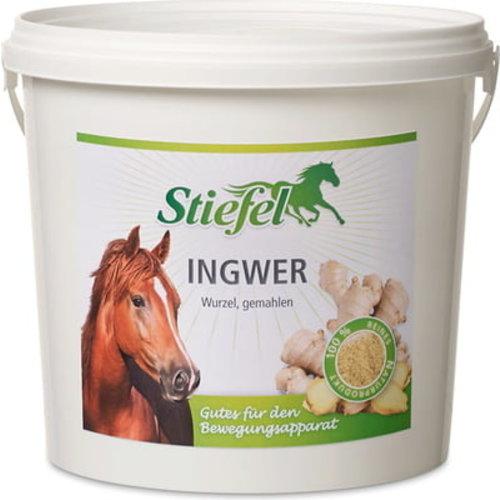 Stiefel Ginger, ground