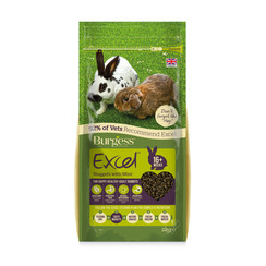 Excel Rabbit Adult