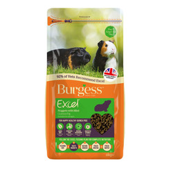 Excel Guinea Pig