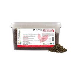 PHYTO FOURBURE / LAMINITIS herbal mix