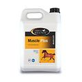 HorseMaster MUSCLE PLUS -supplement