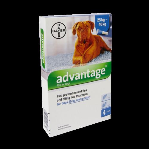 Bayer Advantage Hond