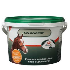 PrimeVal Gelatinaat Horse