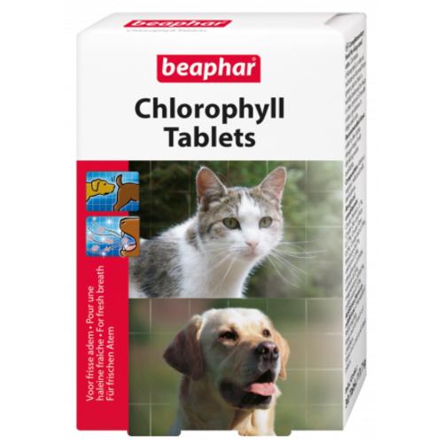 Beaphar Chlorophyl Tablets (odour of heat, bad breath) dog/cat