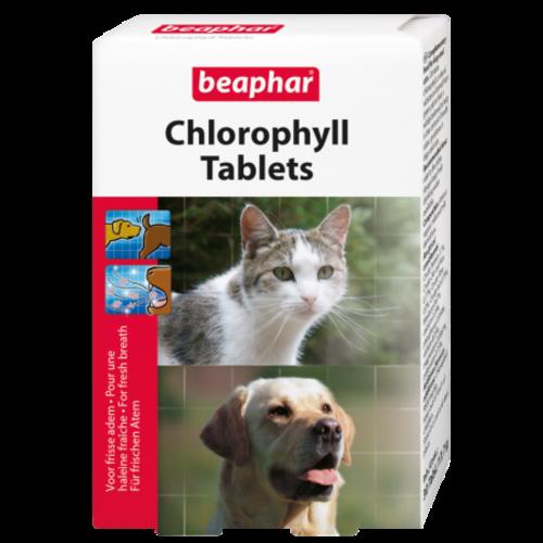 Beaphar Chlorophyl Tabletten (Hitzegeruch, Mundgeruch) Hund / Katze