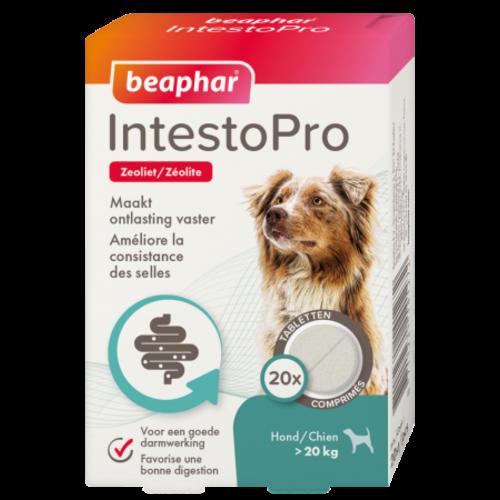Beaphar IntestoPro hond > 20kg (bij dunne ontlasting)