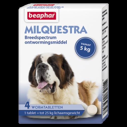 Beaphar Milquestra hond (5 - 75kg)