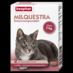 Milquestra cat (2 - 12kg)