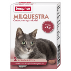 Milquestra Katze (2 - 12kg)
