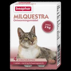 Milquestra kat (2 - 12kg)