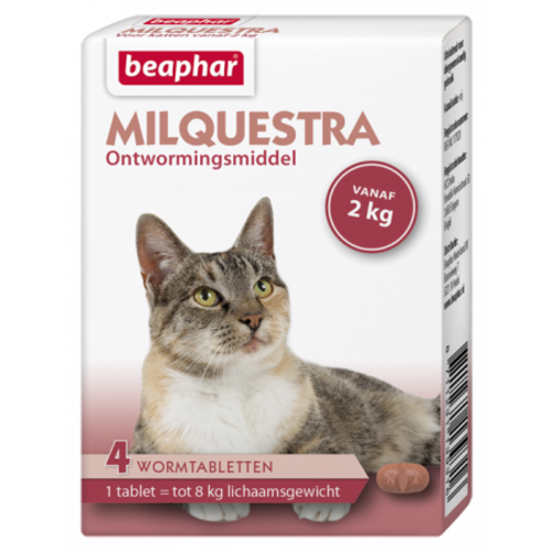 Beaphar Milquestra kat (2 - 12kg)