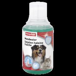 Mouthwash dog/cat