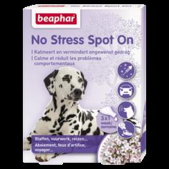 No Stress spot on dog
