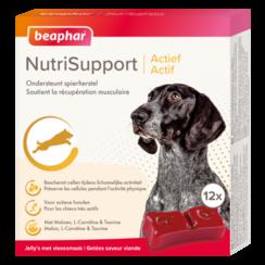 NutriSupport Actief hond