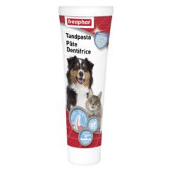 Toothpaste dog/cat
