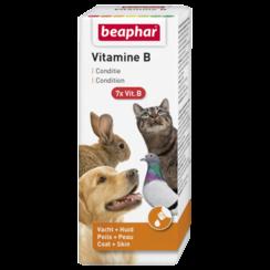 Vitamine B 50ml