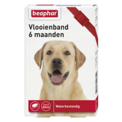 Flea collar 6mnd dog red