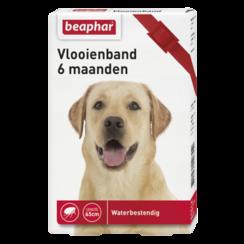 Vlooienband 6mnd hond rood