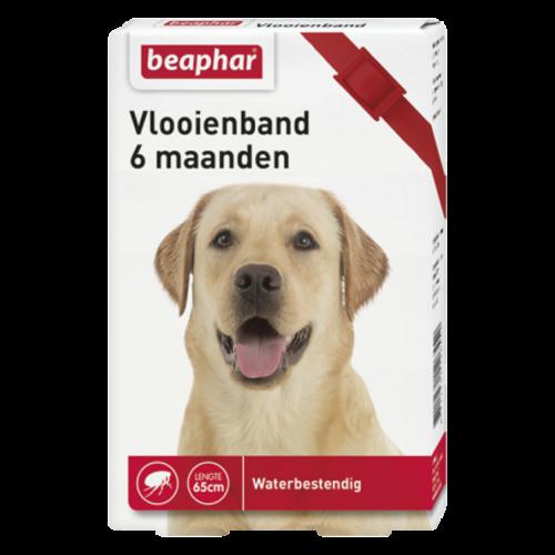 Beaphar Vlooienband 6mnd hond rood