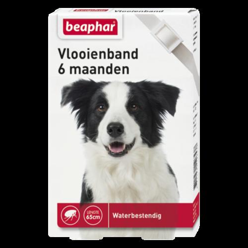 Beaphar Flohhalsband 6mnd Hund weiß
