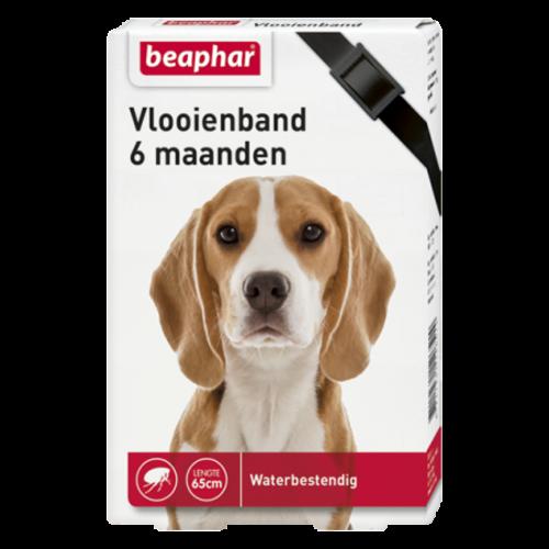 Beaphar Vlooienband 6mnd hond zwart