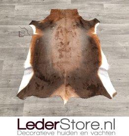 Blesbuck hide brown white 110x90cm