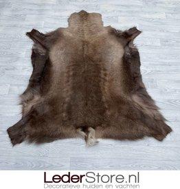 Reindeer hide brown white 145x120cm