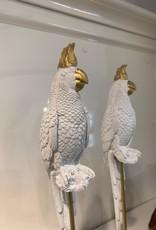 Envogue Home Witte papegaai