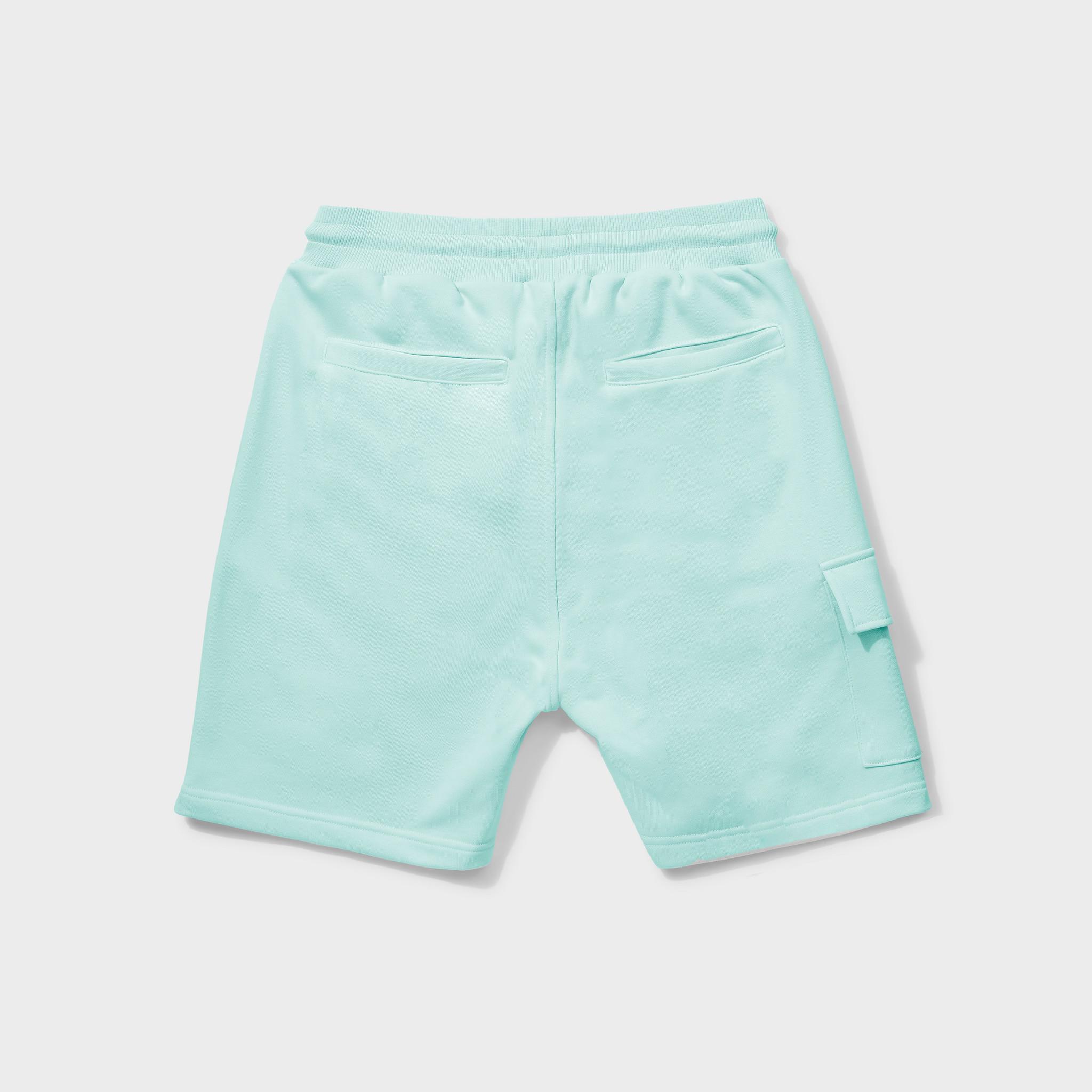 Travis shorts mint-2