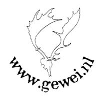 Gewei.nl | Decoratieve Geweien & Hoorns