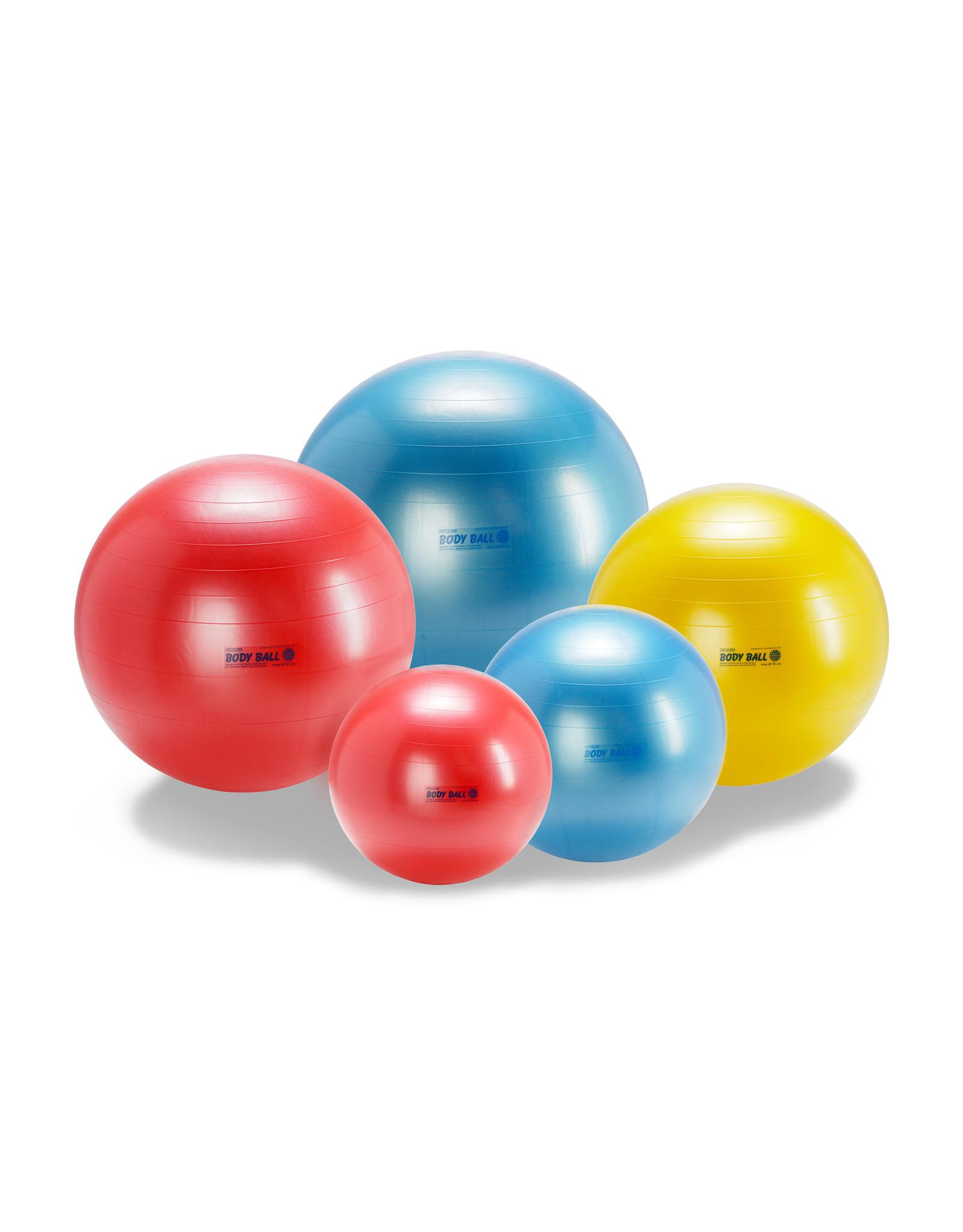 Gymnic Body Ball 75 BRQ / Y