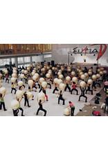 Gymnic Fit-Ball 55 BRQ / WT