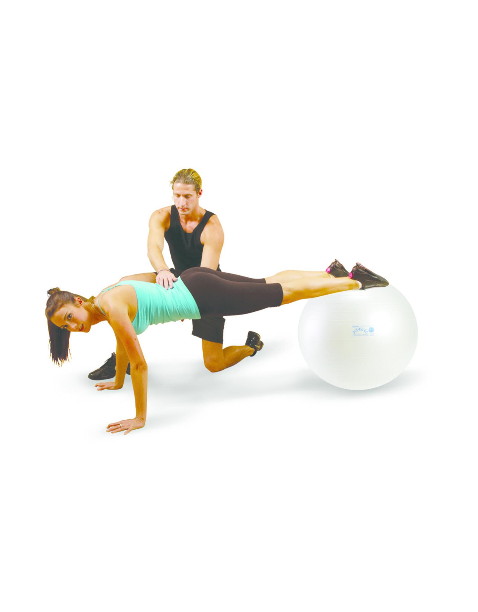 Gymnic Fit-Ball 75 BRQ / WT