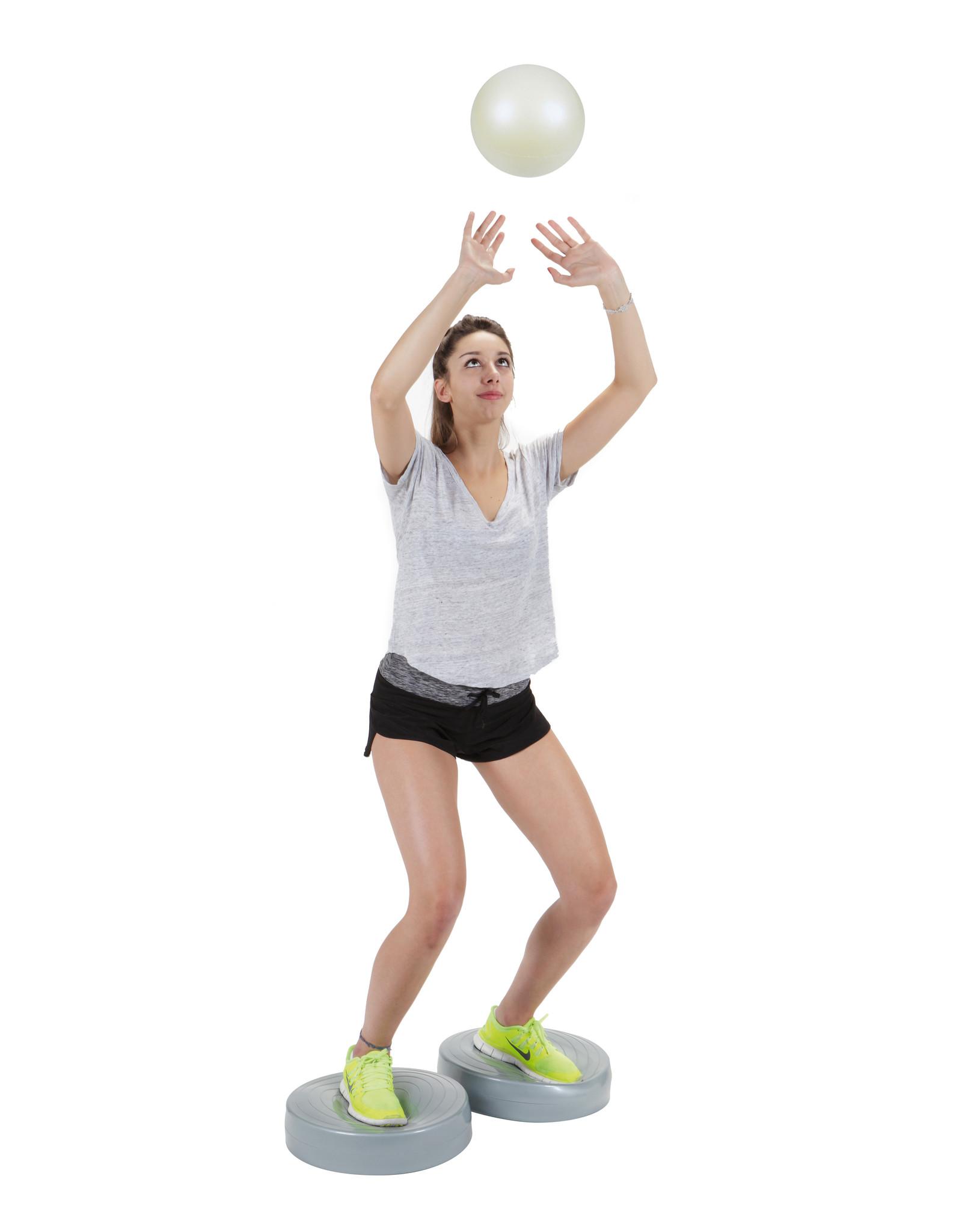 Gymnic Stability Wheel / GY
