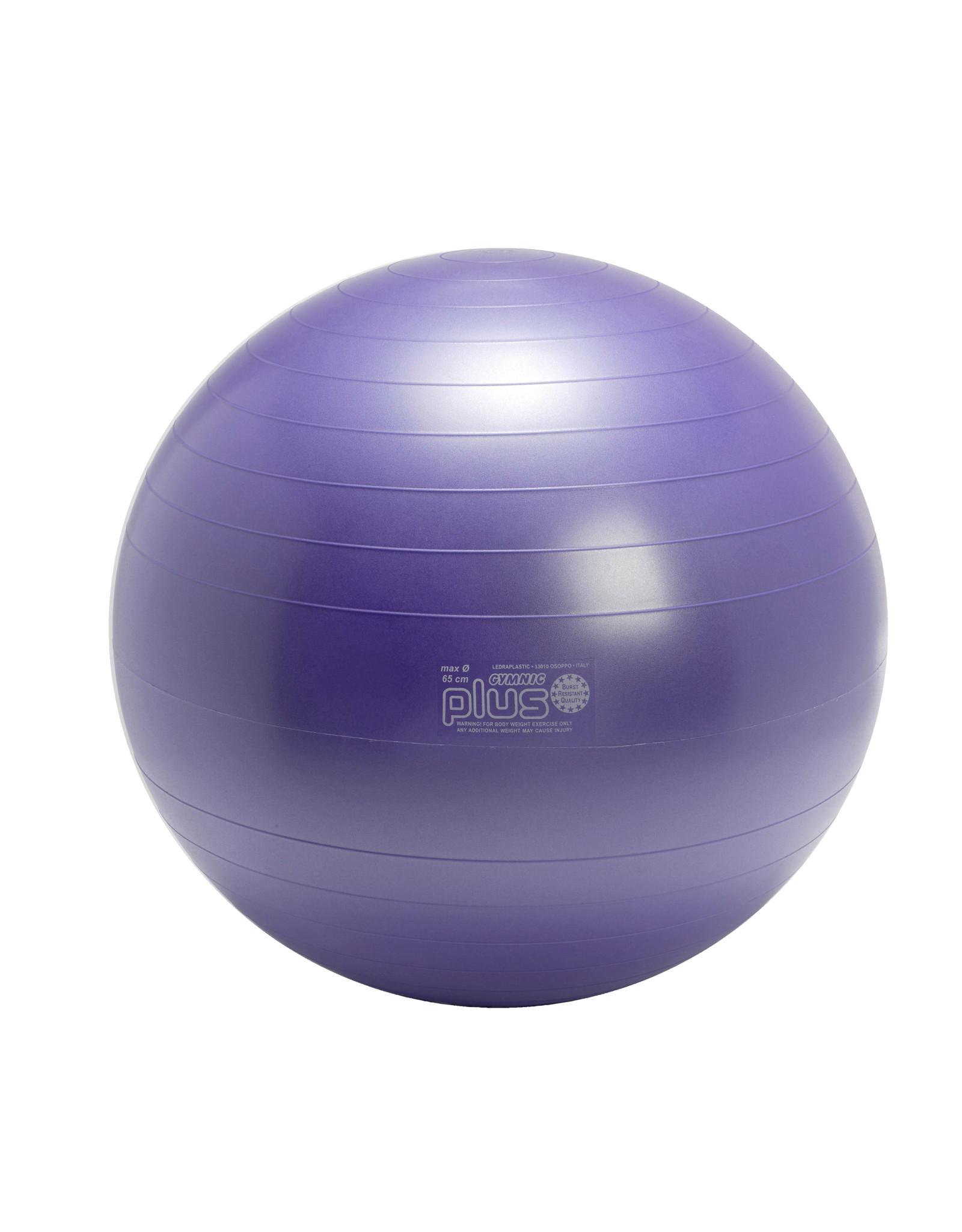 Gymnic Gymnic Plus 65 BRQ / PR