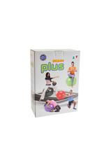 Gymnic Gymnic Plus 55 BRQ / R