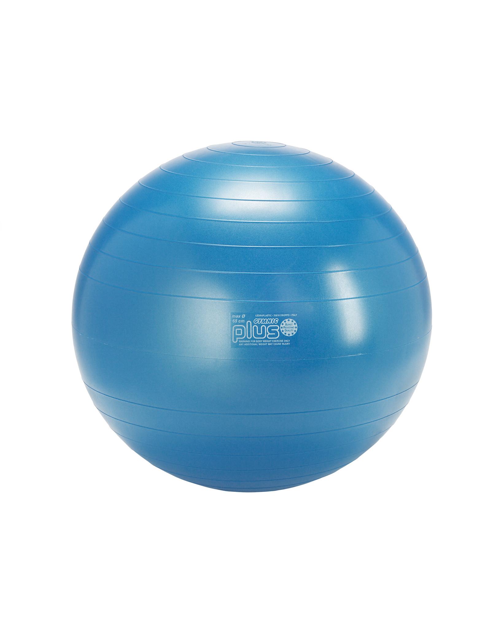 Gymnic Gymnic Plus 65 BRQ / B