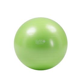 Gymnic Gymnic Plus 65 BRQ / LG