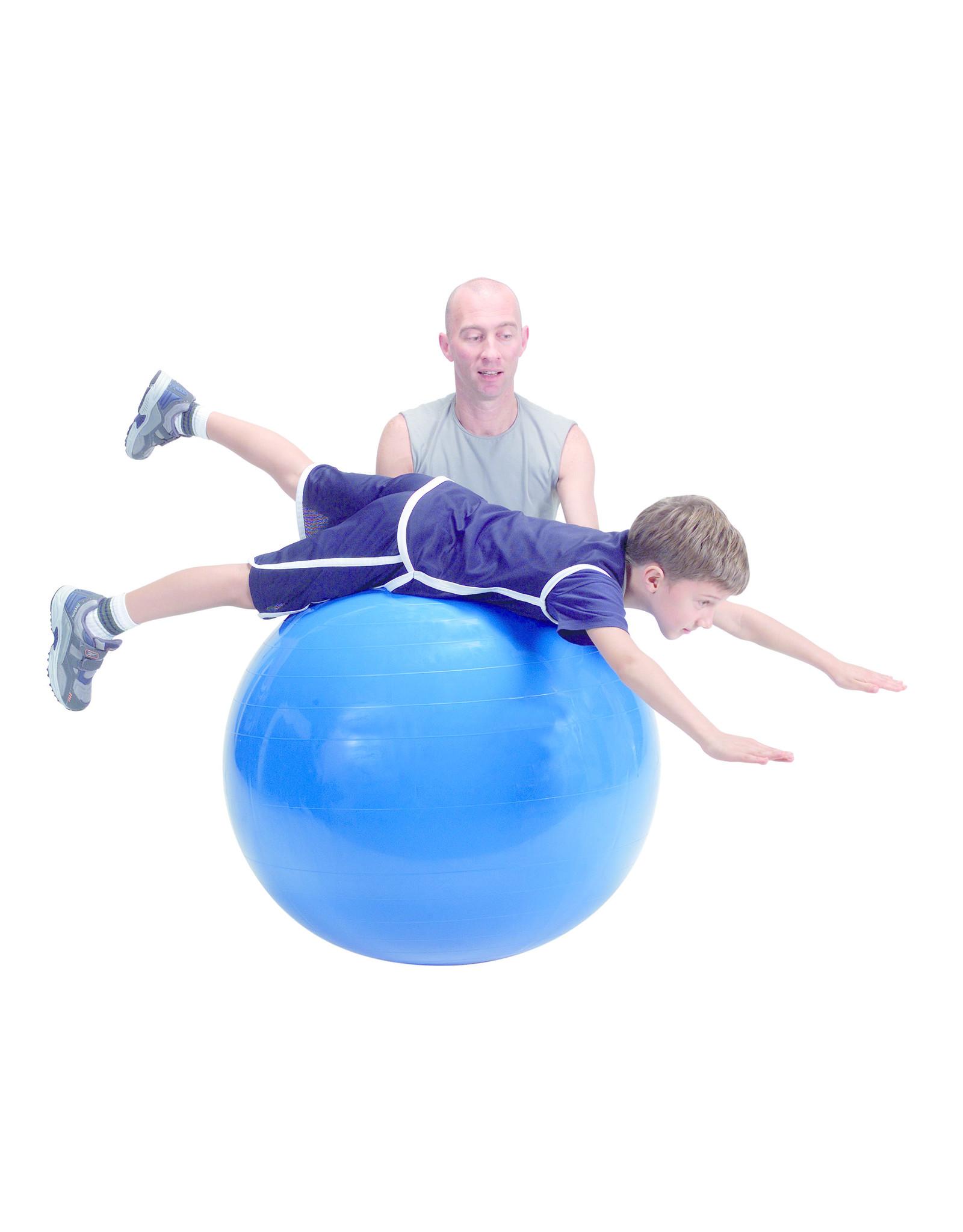 Gymnic Physio Gymnic 95 / B