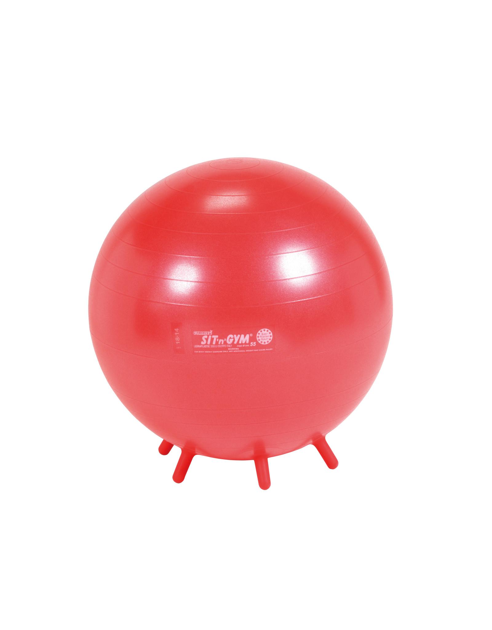 Gymnic Sit'n'Gym 55 BRQ / R