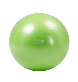 Gymnic Physio Gymnic Plus 95 BRQ / LG