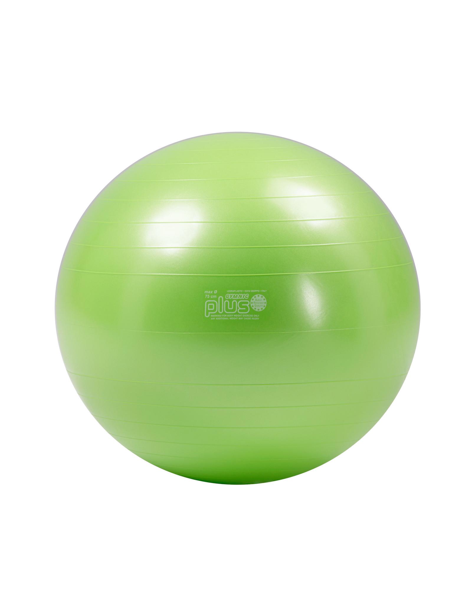Gymnic Physio Gymnic Plus 120BRQ / LG